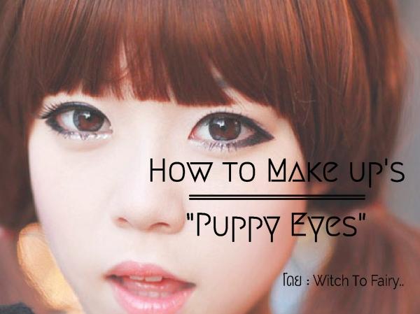 Puppy Eyes-01