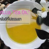 """""""Camellia Tea Oil"""" ...น้ำมันดีที่ไม่ธรรมดา"""