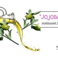 Jojoba Oil ... สารสกัดธรรมชาติที่ควรรู้จัก